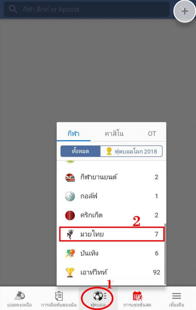 วิธีแทงมวยไทย Maxbet มือถือ