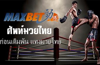 Maxbet ศัพท์แทงมวยไทยออนไลน์ ก่อนเดิมพัน